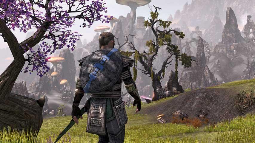 The Elder Scrolls Online Update patch notes
