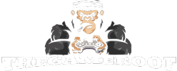 THEGAMEROOF - Games Guides, Updates & News